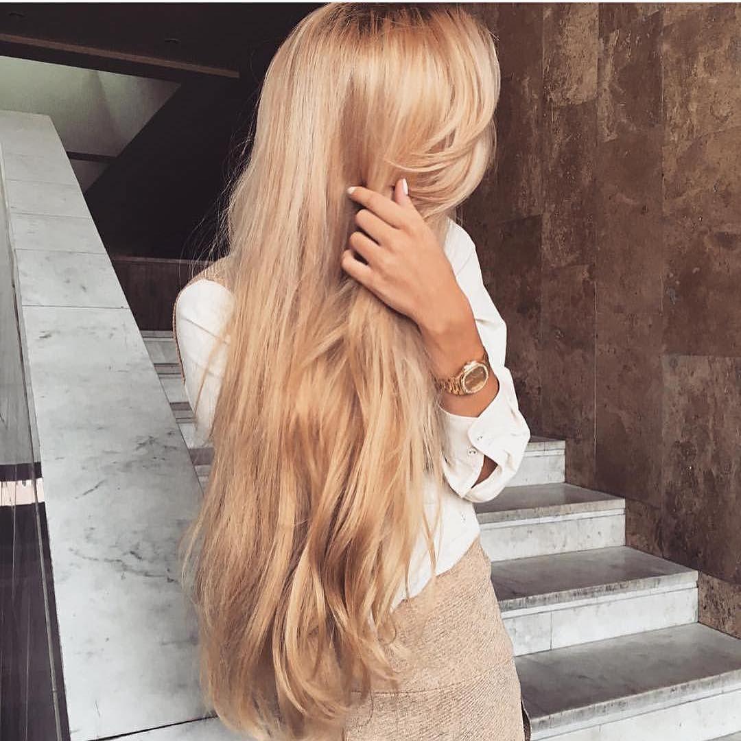 Картинки по запросу корень ревеня для волос