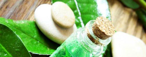 Масло чайного дерева для волос: использование в пользу локонов