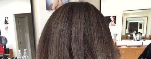 Какой вид может иметь растяжка на волосах? (20 фото)