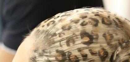 Леопардовое окрашивание волос (29 фото)
