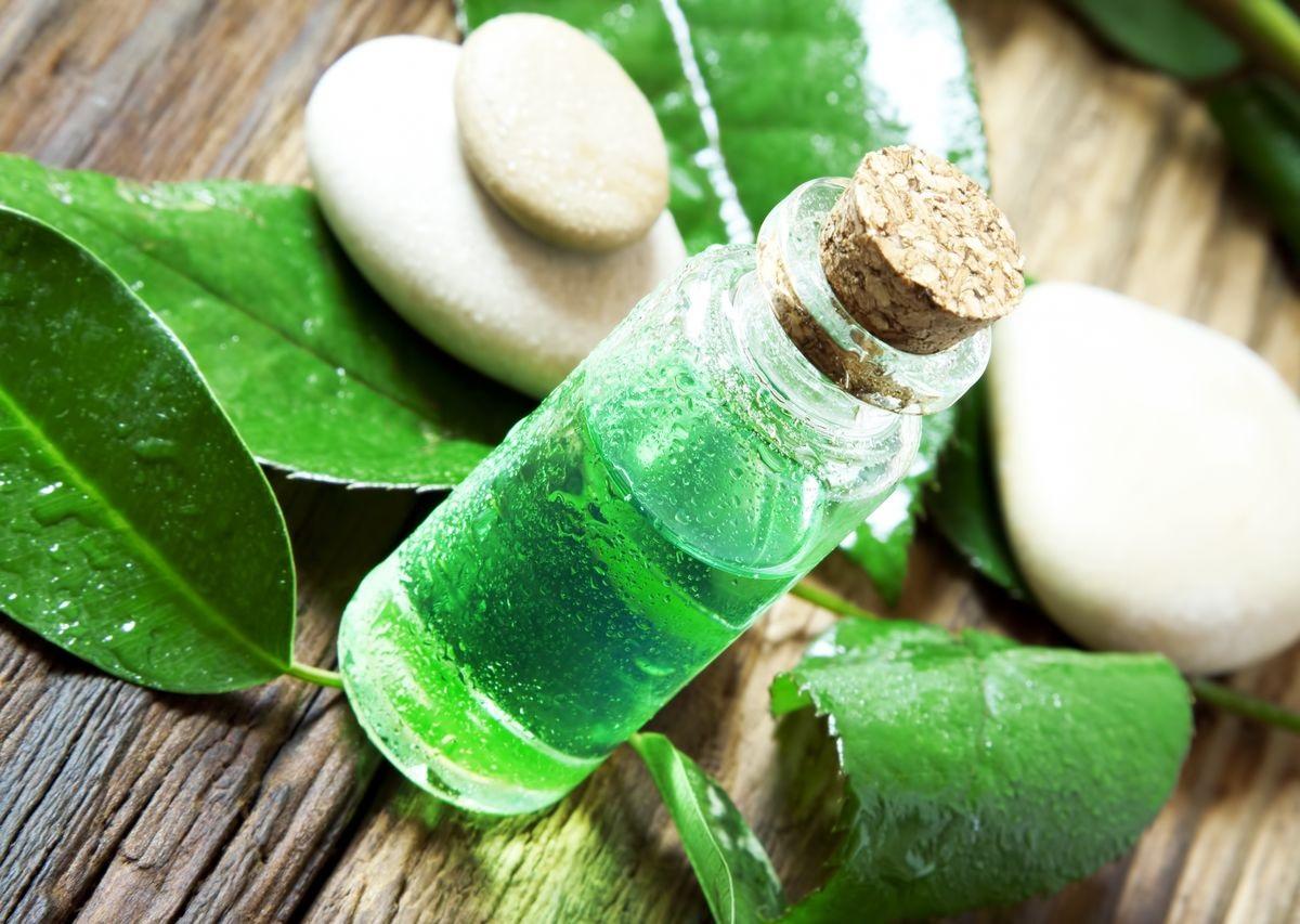 Как используется эфирное масло чайного дерева для волос?