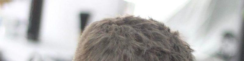 Английская мужская стрижка (20 фото)